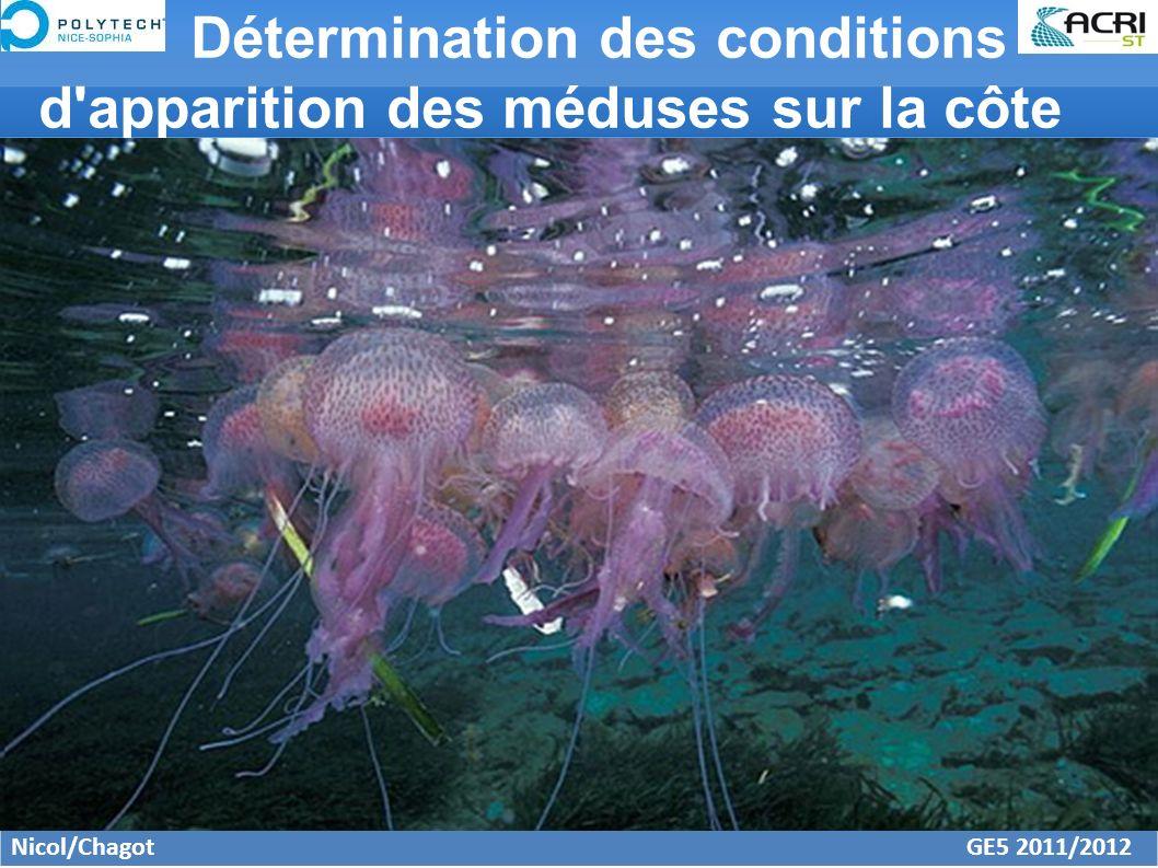 Détermination des conditions d'apparition des méduses sur la côte Nicol/Chagot GE5 2011/2012
