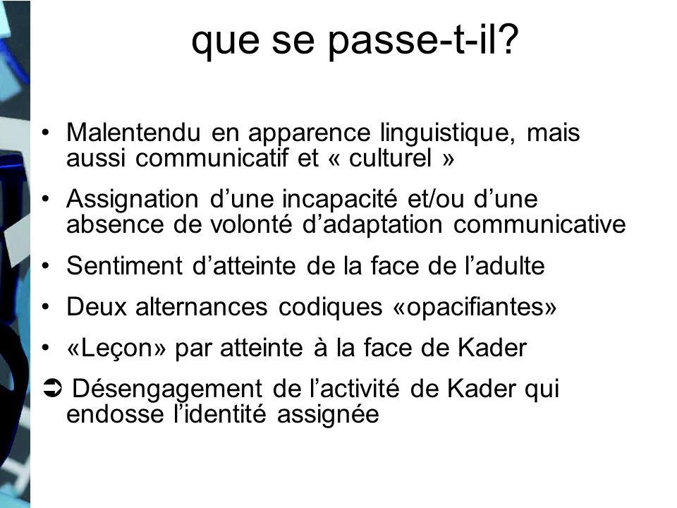 Malentendu en apparence linguistique, mais aussi communicatif et « culturel » Assignation dune incapacité et/ou dune absence de volonté dadaptation co