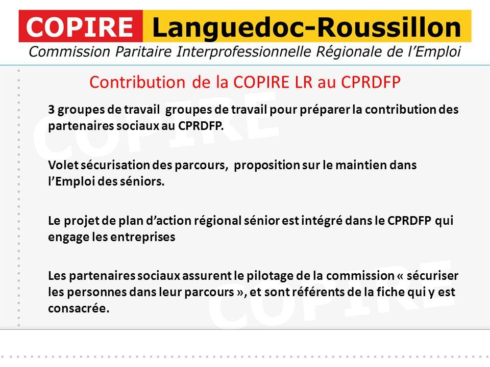 Contribution de la COPIRE LR au CPRDFP 3 groupes de travail groupes de travail pour préparer la contribution des partenaires sociaux au CPRDFP.