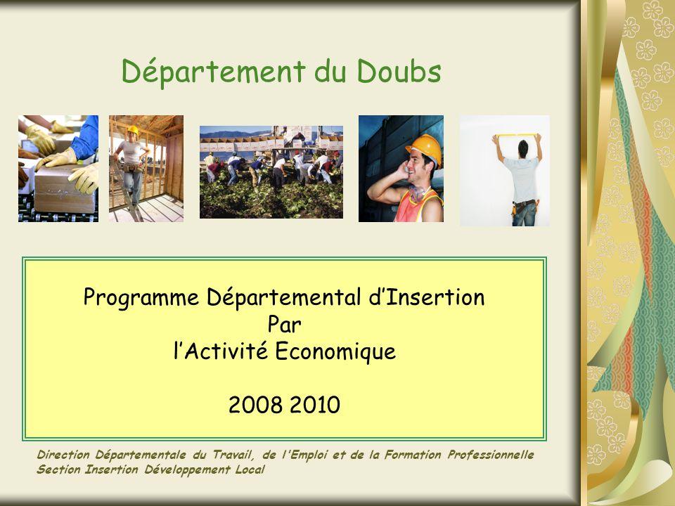 Département du Doubs Programme Départemental dInsertion Par lActivité Economique 2008 2010 Direction Départementale du Travail, de l Emploi et de la Formation Professionnelle Section Insertion Développement Local
