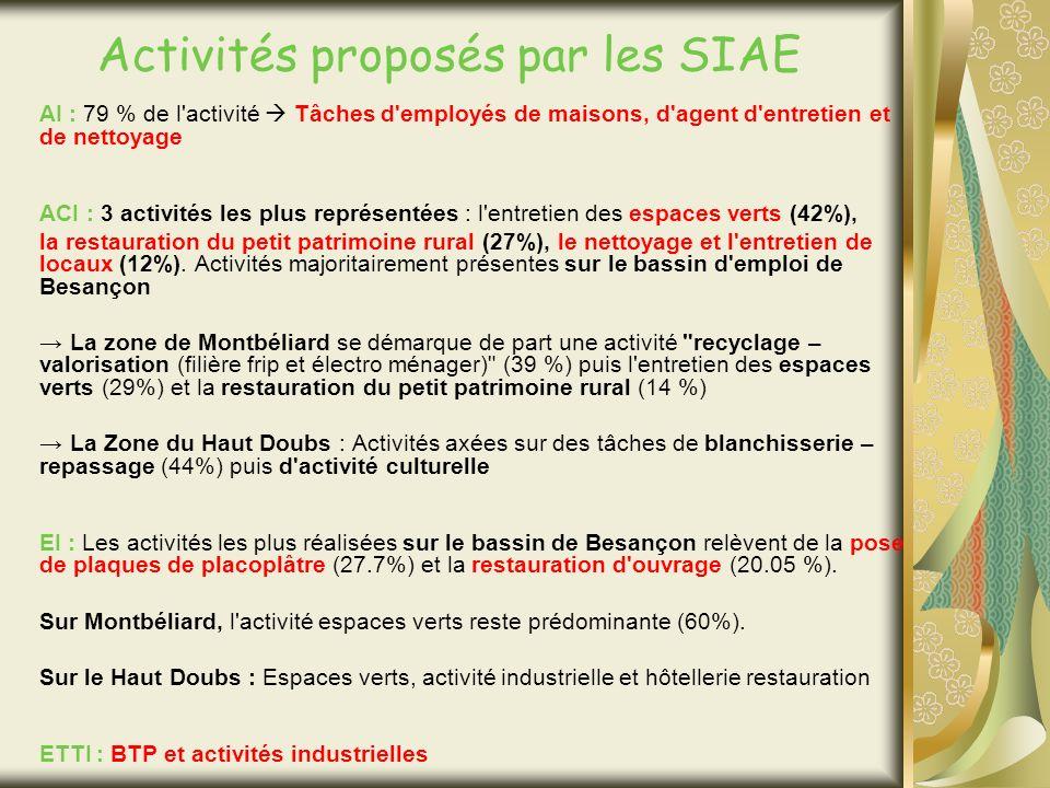 Activités proposés par les SIAE AI : 79 % de l activité Tâches d employés de maisons, d agent d entretien et de nettoyage ACI : 3 activités les plus représentées : l entretien des espaces verts (42%), la restauration du petit patrimoine rural (27%), le nettoyage et l entretien de locaux (12%).