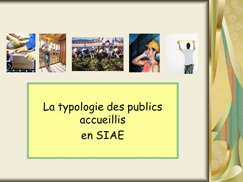 La typologie des publics accueillis en SIAE