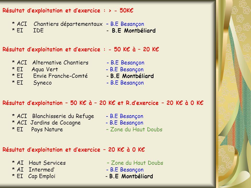 Résultat dexploitation et dexercice : > - 50K * ACI Chantiers départementaux – B.E Besançon * EI IDE - B.E Montbéliard Résultat dexploitation et dexercice : - 50 K à – 20 K * ACI Alternative Chantiers - B.E Besançon * EI Aqua Vert - B.E Besançon * EI Envie Franche-Comté - B.E Montbéliard * EI Syneco - B.E Besançon Résultat dexploitation – 50 K à – 20 K et R.dexercice – 20 K à 0 K * ACI Blanchisserie du Refuge - B.E Besançon * ACI Jardins de Cocagne - B.E Besançon * EI Pays Nature – Zone du Haut Doubs Résultat dexploitation et dexercice – 20 K à 0 K * AI Haut Services – Zone du Haut Doubs * AI Intermed - B.E Besançon * EI Cap Emploi - B.E Montbéliard