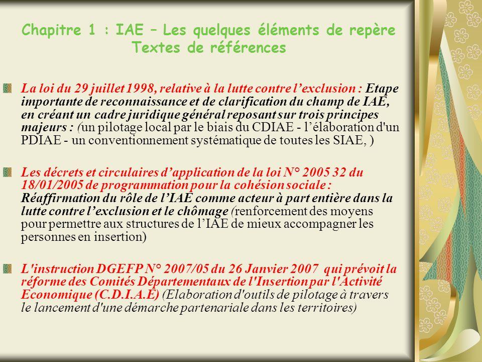 Chapitre 1 : IAE – Les quelques éléments de repère Textes de références La loi du 29 juillet 1998, relative à la lutte contre lexclusion : Etape importante de reconnaissance et de clarification du champ de IAE, en créant un cadre juridique général reposant sur trois principes majeurs : (un pilotage local par le biais du CDIAE - lélaboration d un PDIAE - un conventionnement systématique de toutes les SIAE, ) Les décrets et circulaires dapplication de la loi N° 2005 32 du 18/01/2005 de programmation pour la cohésion sociale : Réaffirmation du rôle de lIAE comme acteur à part entière dans la lutte contre lexclusion et le chômage (renforcement des moyens pour permettre aux structures de lIAE de mieux accompagner les personnes en insertion) L instruction DGEFP N° 2007/05 du 26 Janvier 2007 qui prévoit la réforme des Comités Départementaux de l Insertion par l Activité Economique (C.D.I.A.E) (Elaboration d outils de pilotage à travers le lancement d une démarche partenariale dans les territoires)