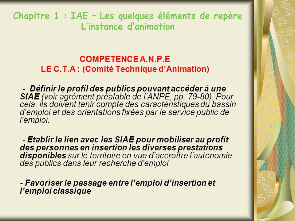 Chapitre 1 : IAE – Les quelques éléments de repère Linstance danimation COMPETENCE A.N.P.E LE C.T.A : (Comité Technique dAnimation) - Définir le profil des publics pouvant accéder à une SIAE (voir agrément préalable de lANPE, pp.