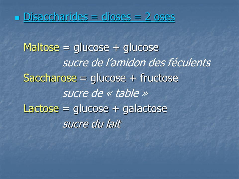 Disaccharides = dioses = 2 oses Disaccharides = dioses = 2 oses Maltose = glucose + glucose sucre de lamidon des féculents Saccharose = glucose + fructose sucre de « table » Lactose = glucose + galactose sucre du lait