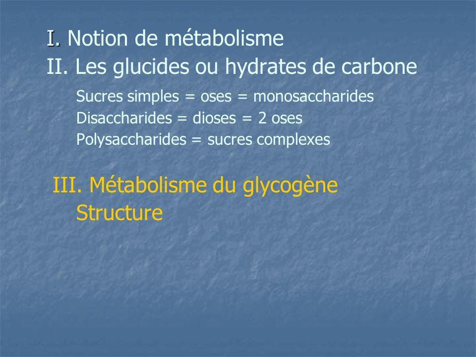 I.I. Notion de métabolisme II.