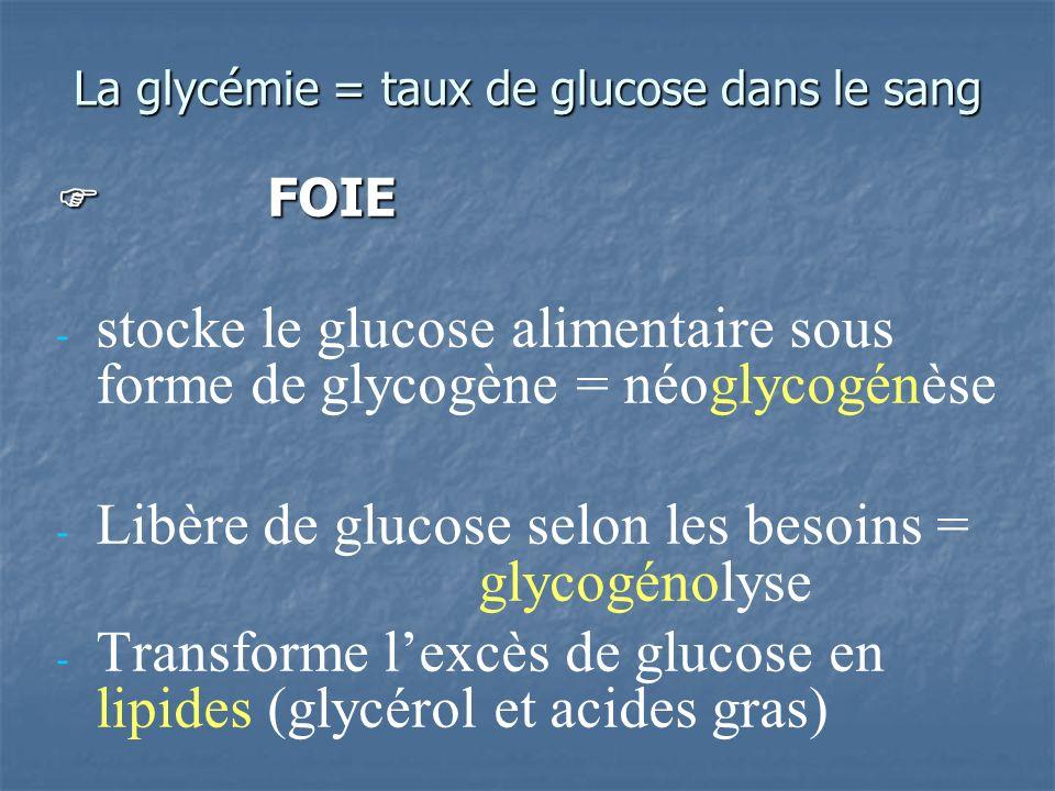 La glycémie = taux de glucose dans le sang FOIE FOIE - - stocke le glucose alimentaire sous forme de glycogène = néoglycogénèse - - Libère de glucose selon les besoins = glycogénolyse - - Transforme lexcès de glucose en lipides (glycérol et acides gras)