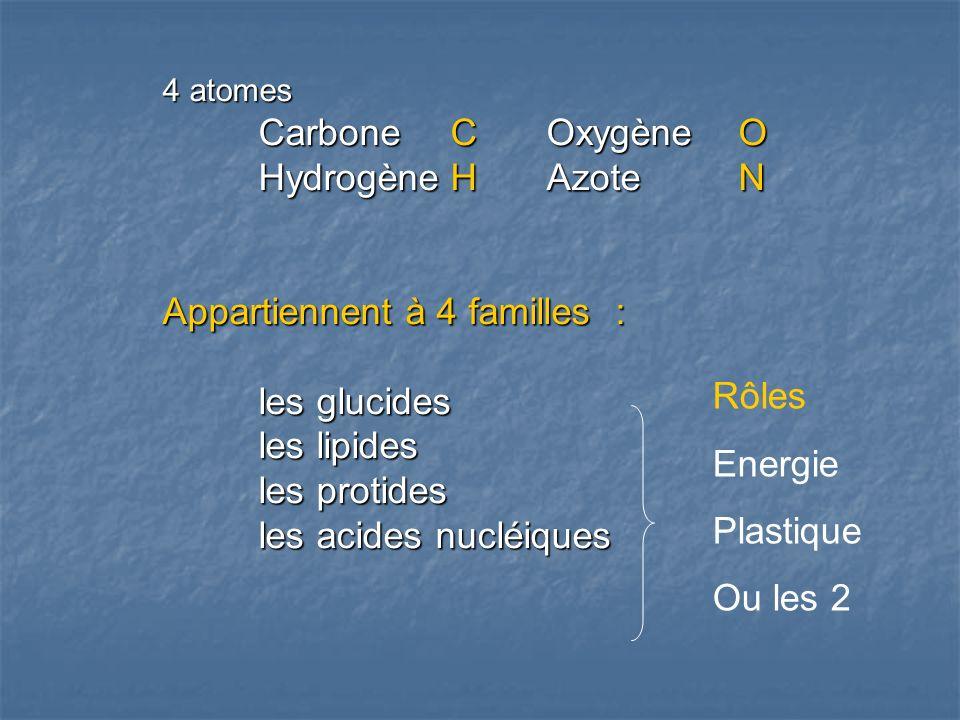 4 atomes Carbone COxygène O HydrogèneHAzoteN Appartiennent à 4 familles : les glucides les lipides les protides les acides nucléiques Rôles Energie Plastique Ou les 2