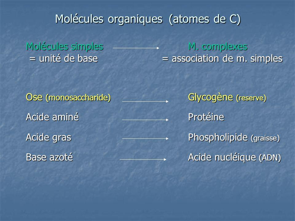 Molécules organiques (atomes de C) Molécules simplesM.