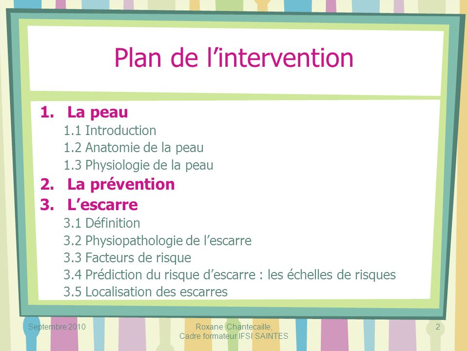 Septembre 2010Roxane Chantecaille, Cadre formateur IFSI SAINTES 2 Plan de lintervention 1.La peau 1.1 Introduction 1.2 Anatomie de la peau 1.3 Physiol
