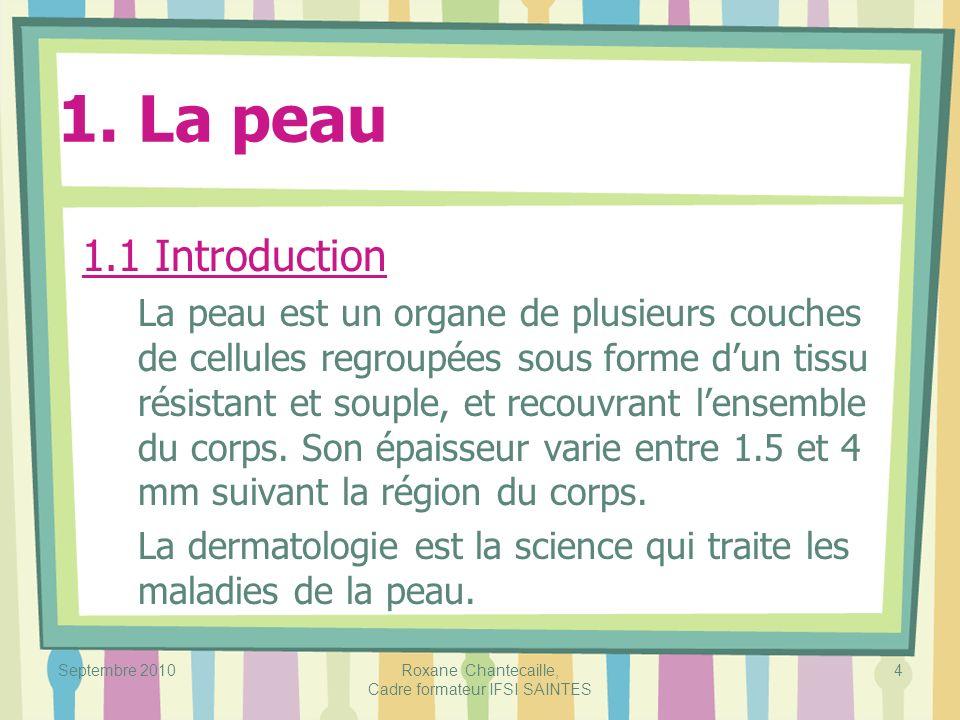 Septembre 2010Roxane Chantecaille, Cadre formateur IFSI SAINTES 4 1. La peau 1.1 Introduction La peau est un organe de plusieurs couches de cellules r