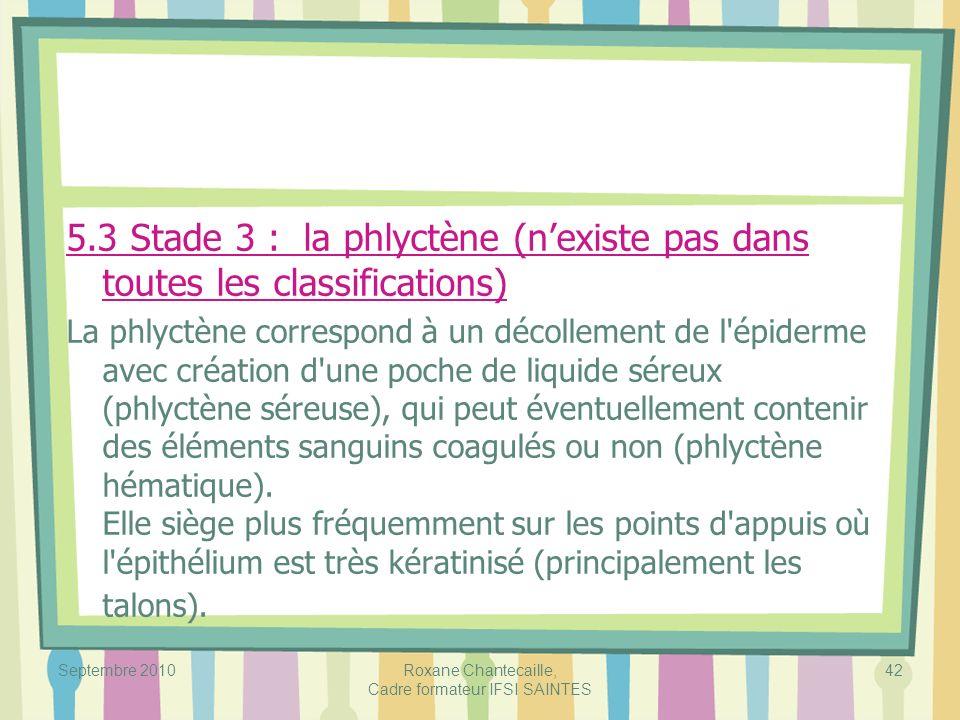 Septembre 2010Roxane Chantecaille, Cadre formateur IFSI SAINTES 42 5.3 Stade 3 : la phlyctène (nexiste pas dans toutes les classifications) La phlyctè