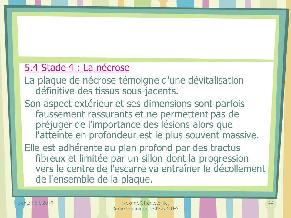Septembre 2010Roxane Chantecaille, Cadre formateur IFSI SAINTES 44 5.4 Stade 4 : La nécrose La plaque de nécrose témoigne d'une dévitalisation définit