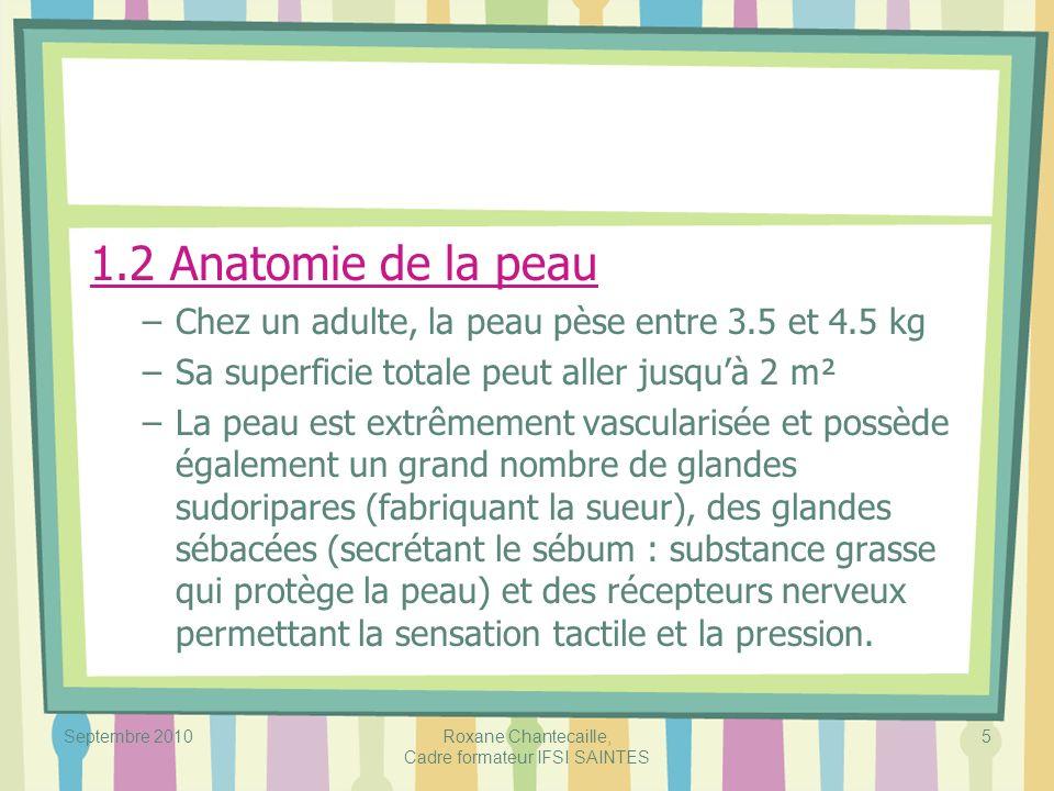 Septembre 2010Roxane Chantecaille, Cadre formateur IFSI SAINTES 6 –La peau est constituée de 3 couches (de la plus superficielle à la plus profonde) : 1.2.1 Lépiderme : il contient différentes variétés de cellules notamment : –les kératinocytes 80% (cellules protéiniques qui protègent, entièrement renouvelées tous les 25 à 40 jours) –les mélanocytes qui fabriquent le pigment : la mélanine (melas = noir) –les cellules de Langherans (immunité) –les cellules de Merkel (terminaison nerveuse) Lépiderme qui recouvre la plante des pieds et la paume des mains est plus épais que celui du reste du corps.