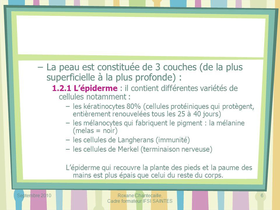 Septembre 2010Roxane Chantecaille, Cadre formateur IFSI SAINTES 6 –La peau est constituée de 3 couches (de la plus superficielle à la plus profonde) :