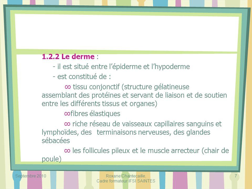 Septembre 2010Roxane Chantecaille, Cadre formateur IFSI SAINTES 7 1.2.2 Le derme : - il est situé entre lépiderme et lhypoderme - est constitué de : t