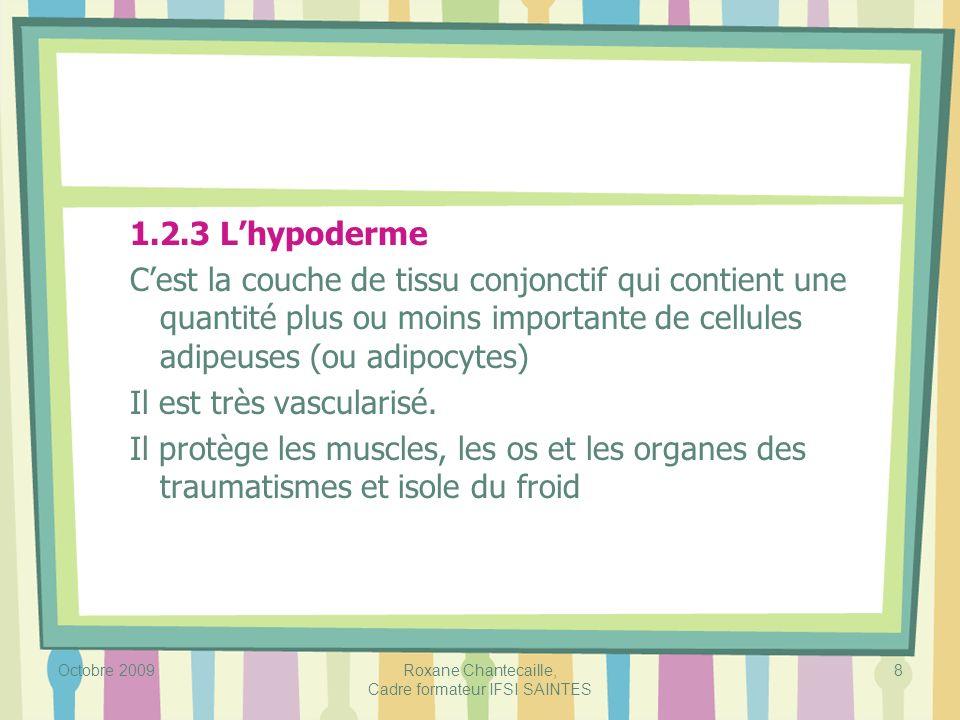 Octobre 2009Roxane Chantecaille, Cadre formateur IFSI SAINTES 8 1.2.3 Lhypoderme Cest la couche de tissu conjonctif qui contient une quantité plus ou