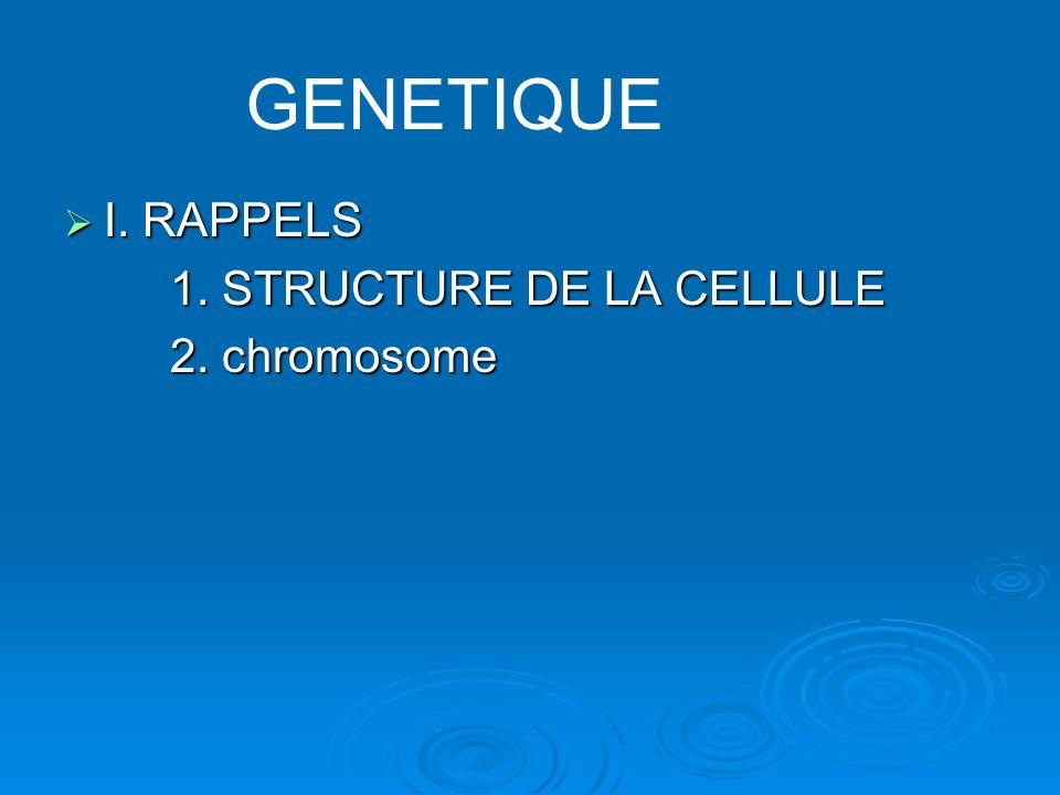 I. RAPPELS I. RAPPELS 1. STRUCTURE DE LA CELLULE 2. chromosome GENETIQUE