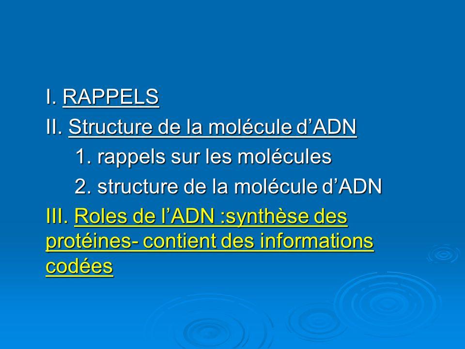 I. RAPPELS II. Structure de la molécule dADN 1. rappels sur les molécules 2. structure de la molécule dADN III. Roles de lADN :synthèse des protéines-