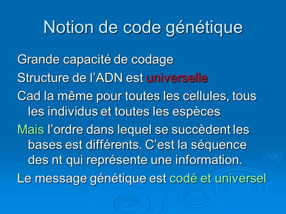 Grande capacité de codage Structure de lADN est universelle Cad la même pour toutes les cellules, tous les individus et toutes les espèces Mais lordre