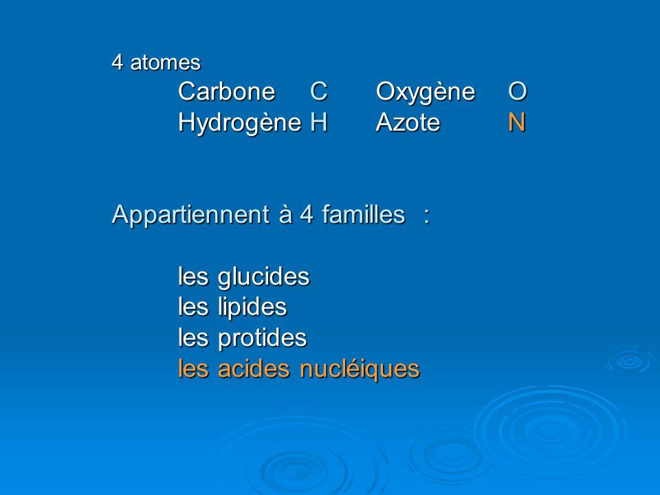 4 atomes Carbone COxygène O HydrogèneHAzoteN Appartiennent à 4 familles : les glucides les lipides les protides les acides nucléiques