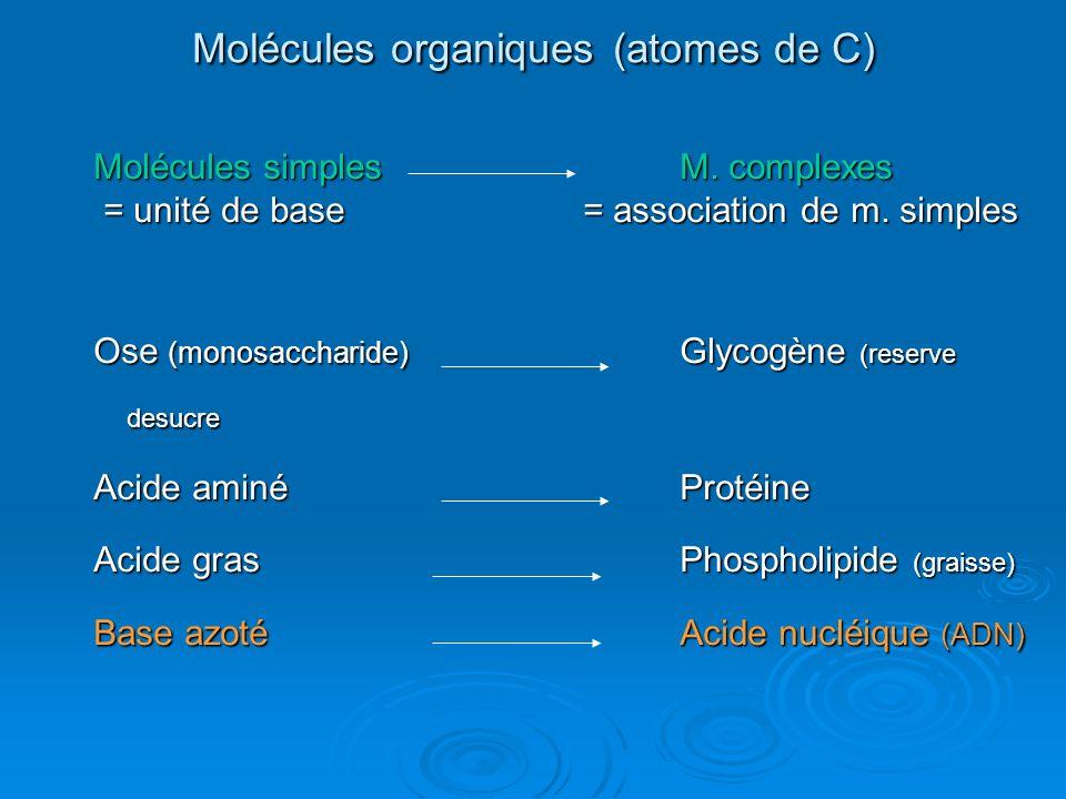 Molécules organiques (atomes de C) Molécules simplesM. complexes = unité de base = association de m. simples = unité de base = association de m. simpl