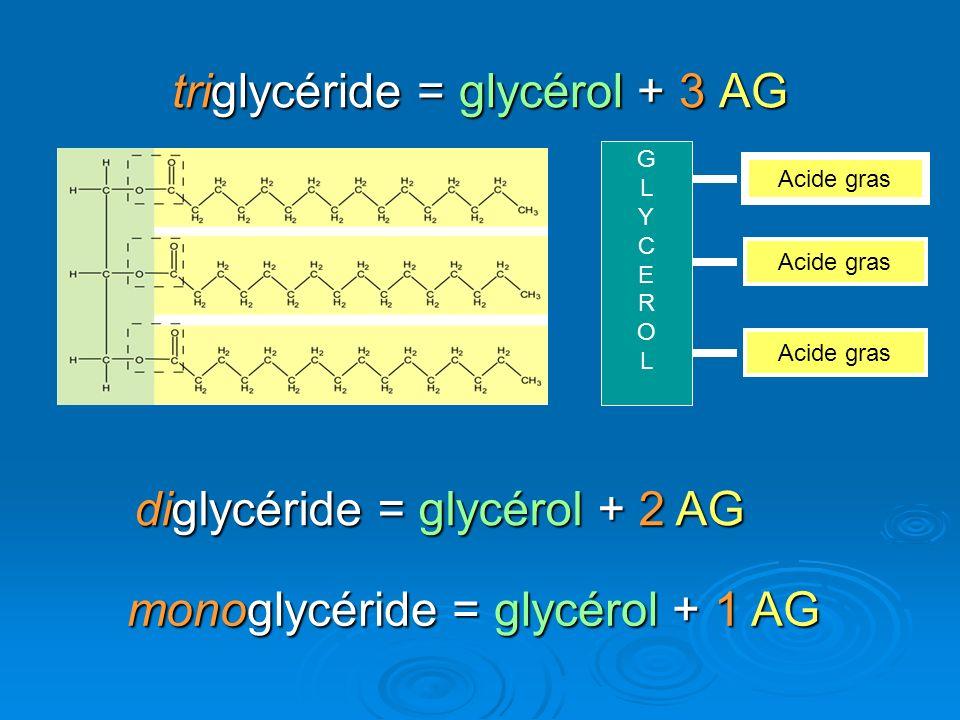 triglycéride = glycérol + 3 AG diglycéride = glycérol + 2 AG monoglycéride = glycérol + 1 AG GLYCEROLGLYCEROL Acide gras