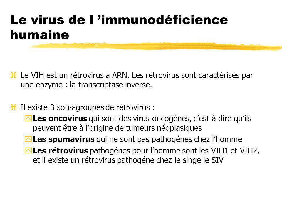 Le virus de l immunodéficience humaine zLe VIH est un rétrovirus à ARN. Les rétrovirus sont caractérisés par une enzyme : la transcriptase inverse. zI