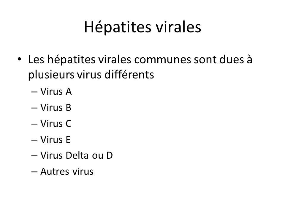 Hépatites virales Les hépatites virales communes sont dues à plusieurs virus différents – Virus A – Virus B – Virus C – Virus E – Virus Delta ou D – A