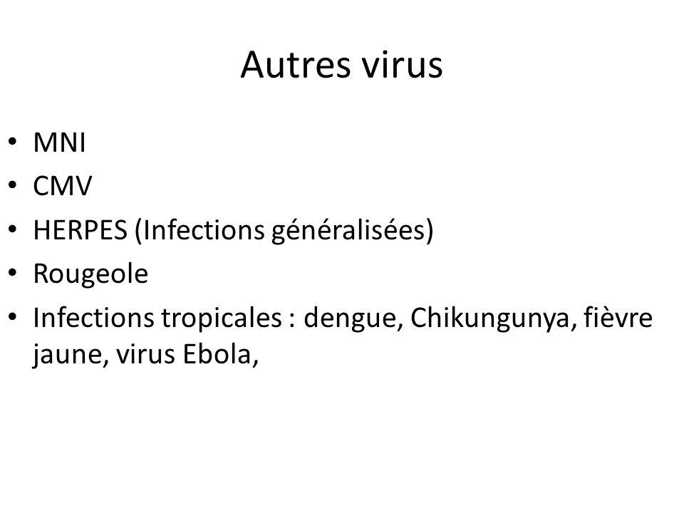 Autres virus MNI CMV HERPES (Infections généralisées) Rougeole Infections tropicales : dengue, Chikungunya, fièvre jaune, virus Ebola,