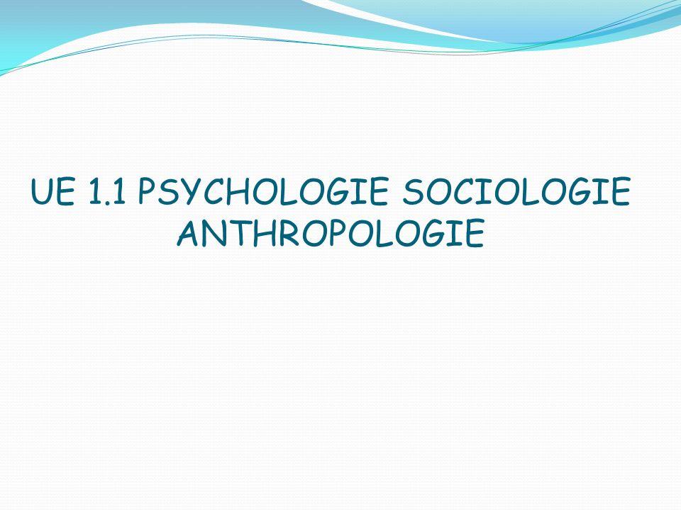 Plan Psychologie -état psychique -syndrome post-chute -diminution chronique de lestime de soi liée au vieillissement -processus de deuil et de veuvage Sociologie -réseau social -questionnement sur le devenir -parentalité