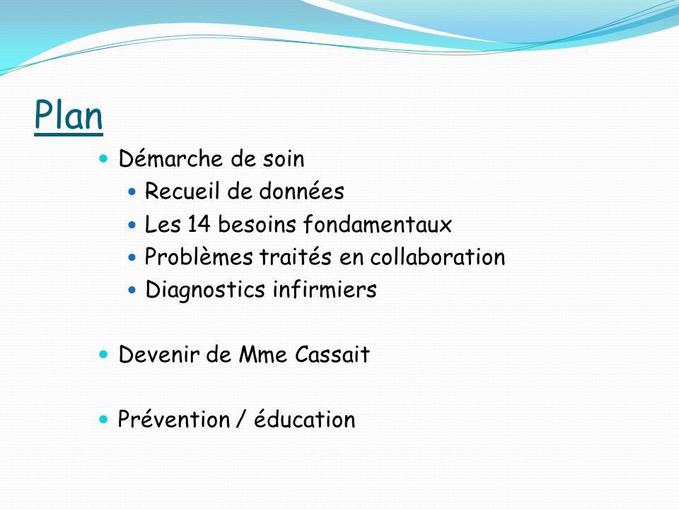 Plan Démarche de soin Recueil de données Les 14 besoins fondamentaux Problèmes traités en collaboration Diagnostics infirmiers Devenir de Mme Cassait Prévention / éducation