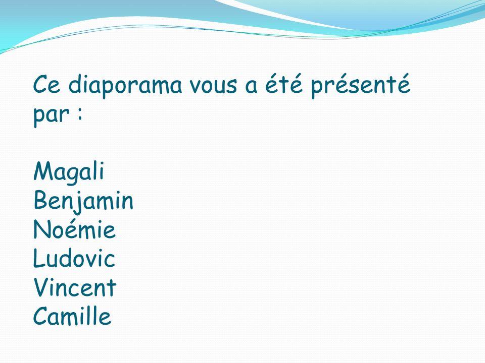 Ce diaporama vous a été présenté par : Magali Benjamin Noémie Ludovic Vincent Camille