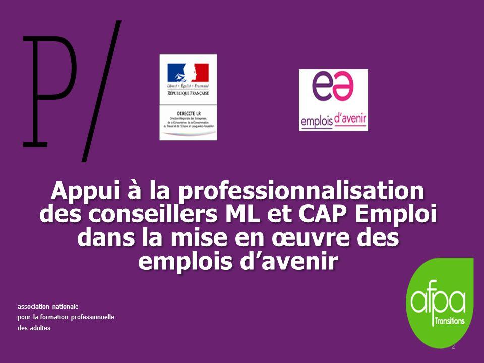 22 Appui à la professionnalisation des conseillers ML et CAP Emploi dans la mise en œuvre des emplois davenir association nationale pour la formation