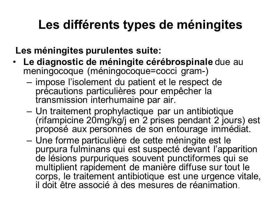 Les différents types de méningites Les méningites purulentes suite: Le diagnostic de méningite cérébrospinale due au meningocoque (méningocoque=cocci