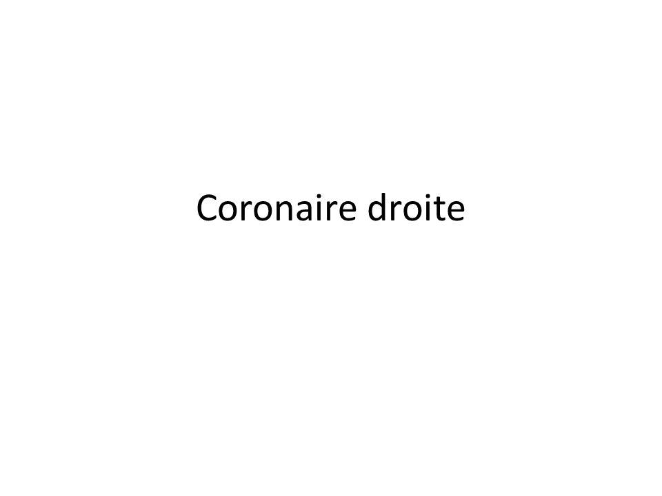Coronaire droite