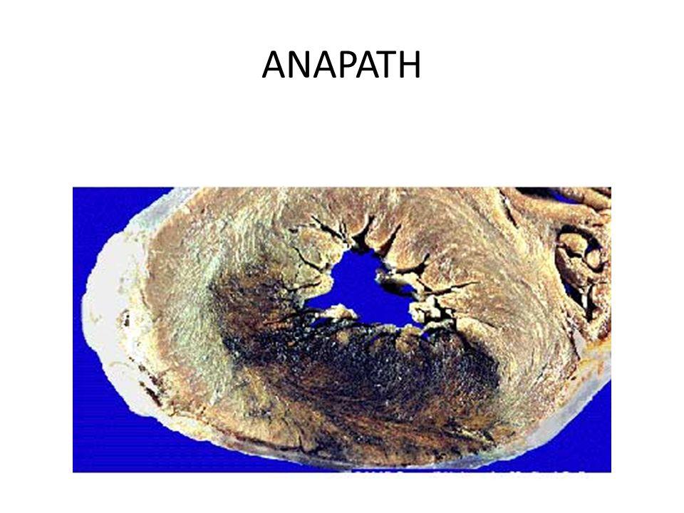 ANAPATH