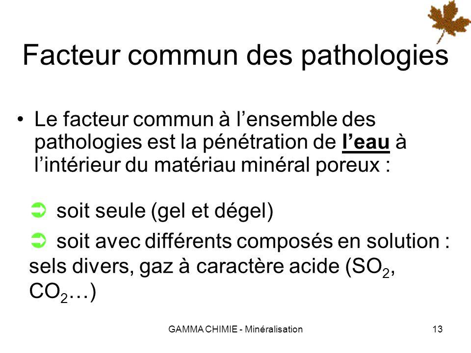 GAMMA CHIMIE - Minéralisation12 Pathologie des matériaux Lorigine des pathologies est multiple : action directe de leau (dissolution) attaque érosive