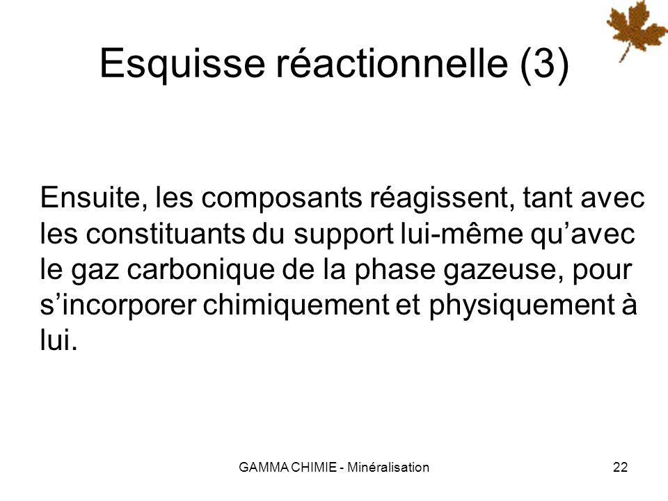 GAMMA CHIMIE - Minéralisation21 Esquisse réactionnelle (2) Sur certains supports, lajout dun primaire (ACTICAL) dans leau de mouillage est nécessaire.