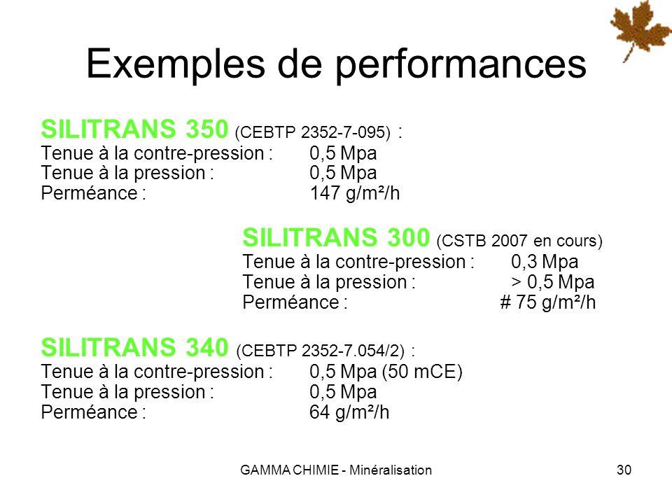 GAMMA CHIMIE - Minéralisation29 Les produits SILITRANS ® Il existe aujourdhui plusieurs formulations types adaptées aux cas les plus courants : SILITR