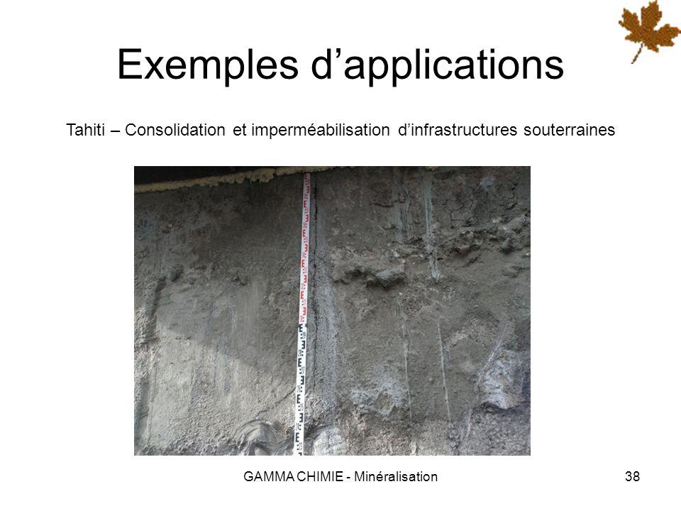 GAMMA CHIMIE - Minéralisation37 Exemples dapplications SNCF – Protection de la façade de la Gare de St Pierre des Corps (37)