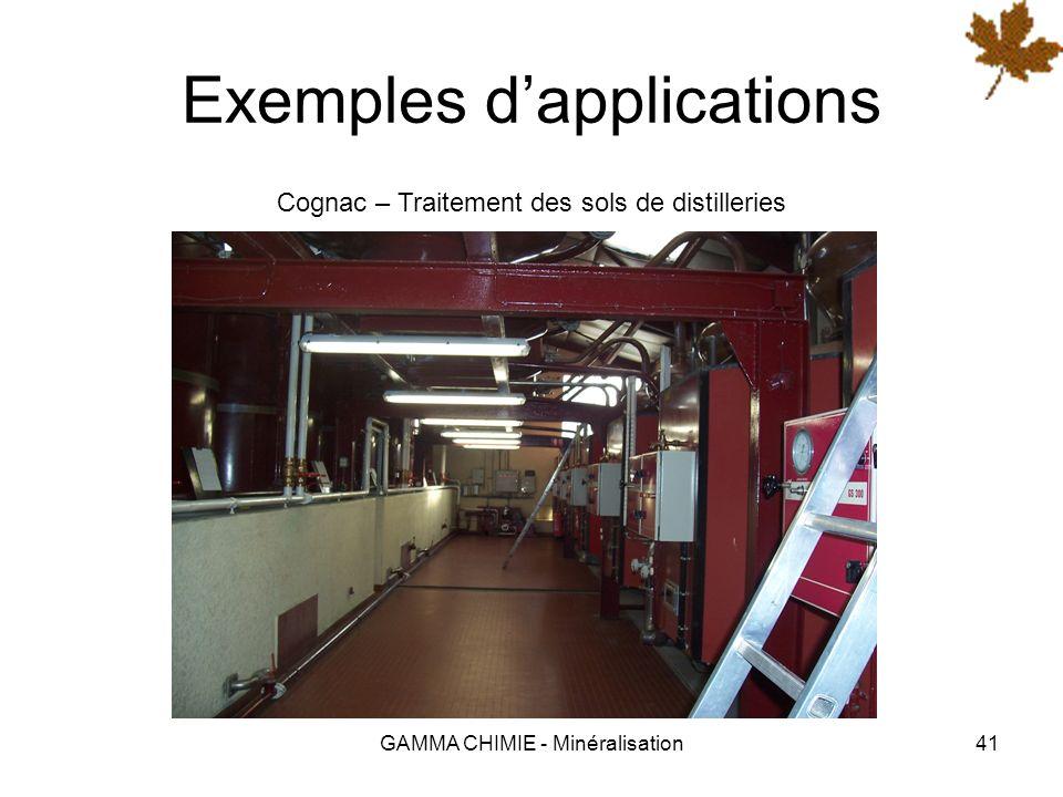 GAMMA CHIMIE - Minéralisation40 Exemples dapplications Thouars – Imperméabilisation des cellules de stockage de céréales