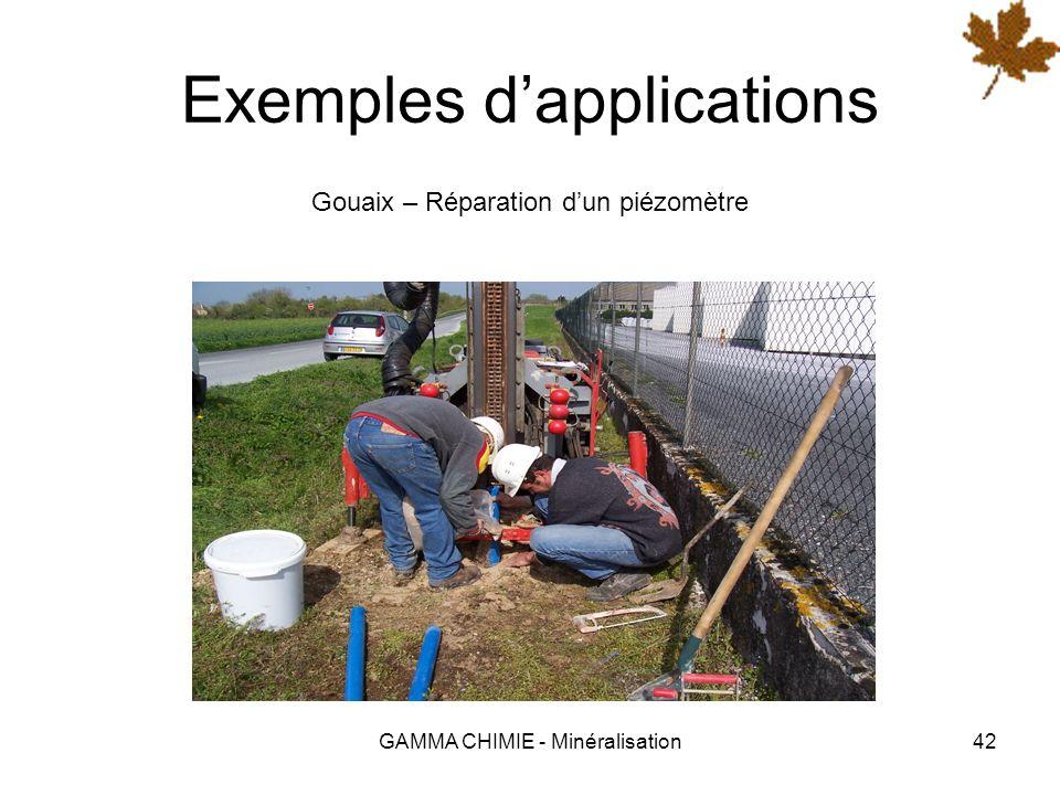 GAMMA CHIMIE - Minéralisation41 Exemples dapplications Cognac – Traitement des sols de distilleries