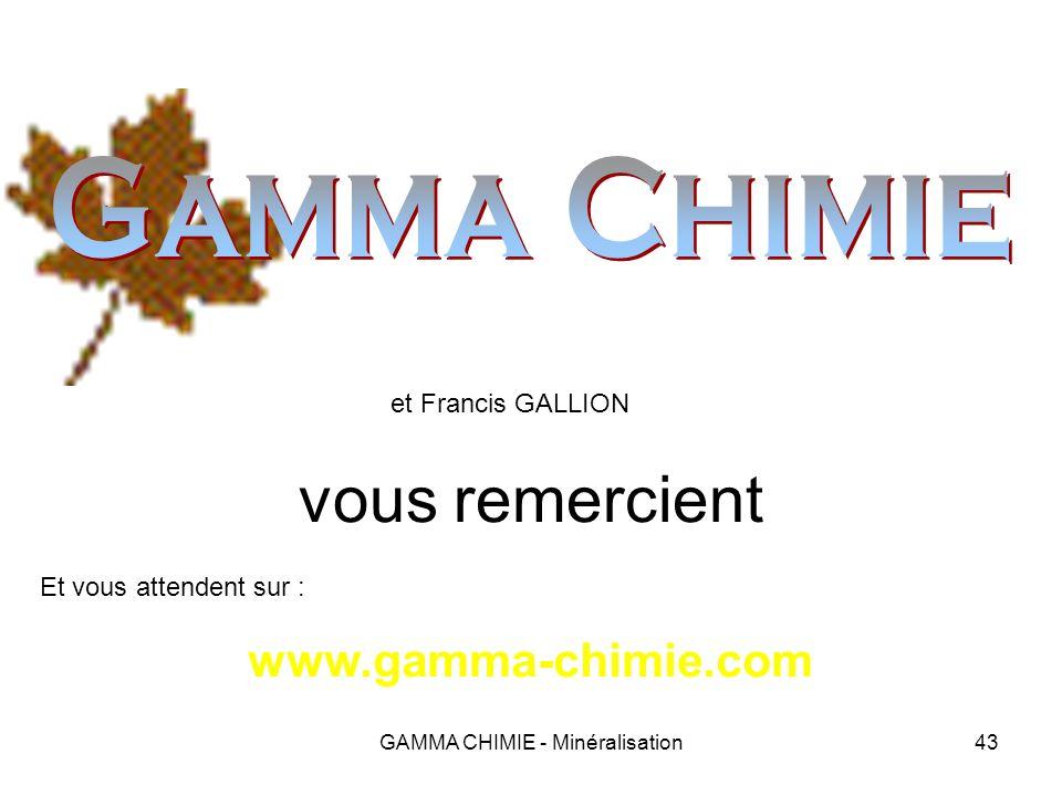 GAMMA CHIMIE - Minéralisation42 Exemples dapplications Gouaix – Réparation dun piézomètre