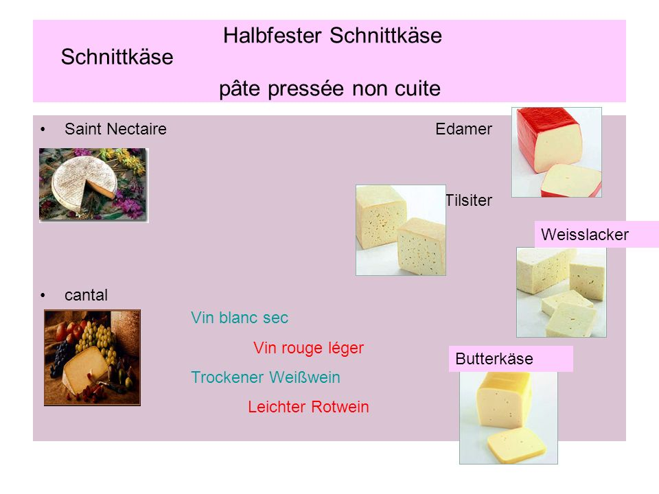 Halbfester Schnittkäse pâte pressée non cuite Saint NectaireEdamer Tilsiter cantal Weisslacker Butterkäse Schnittkäse Vin blanc sec Vin rouge léger Tr