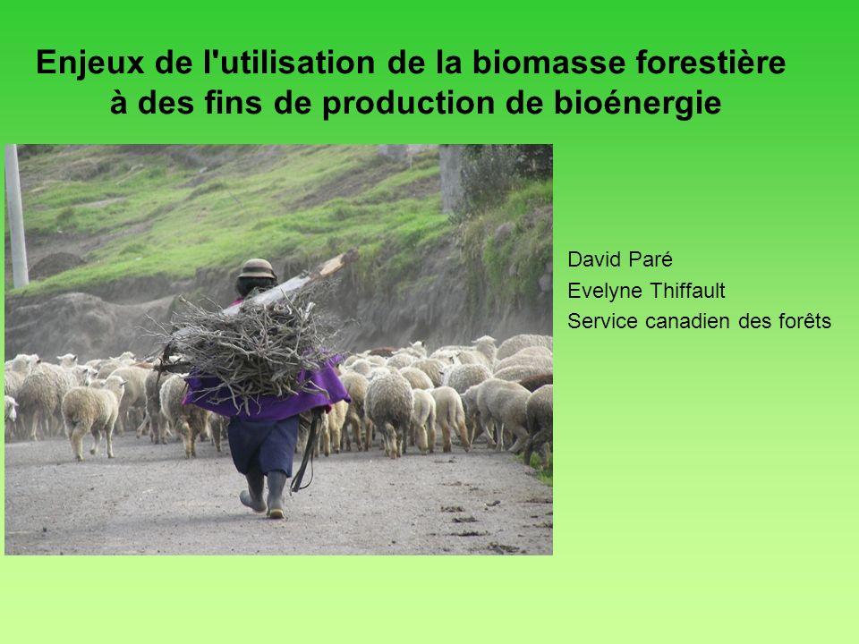 Enjeux de l'utilisation de la biomasse forestière à des fins de production de bioénergie David Paré Evelyne Thiffault Service canadien des forêts