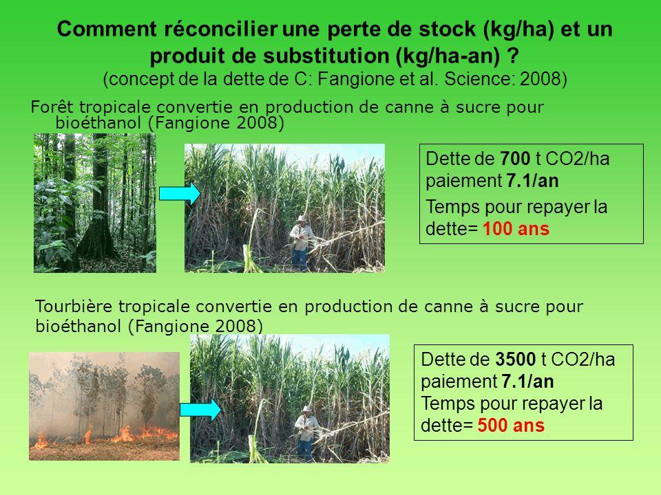 Forêt tropicale convertie en production de canne à sucre pour bioéthanol (Fangione 2008) Comment réconcilier une perte de stock (kg/ha) et un produit