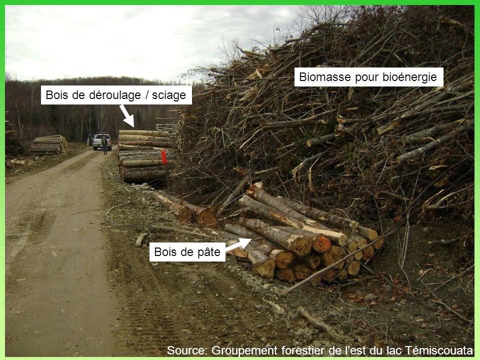 Bois de déroulage / sciage Bois de pâte Biomasse pour bioénergie Source: Groupement forestier de lest du lac Témiscouata
