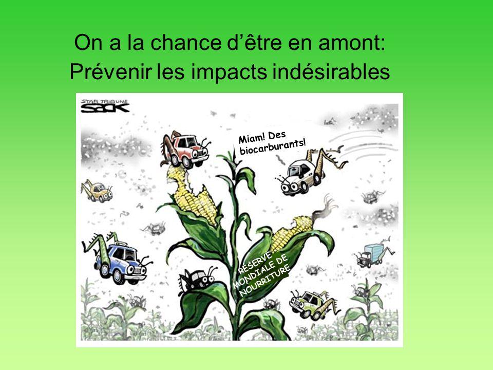 On a la chance dêtre en amont: Prévenir les impacts indésirables Miam! Des biocarburants! RÉSERVE MONDIALE DE NOURRITURE